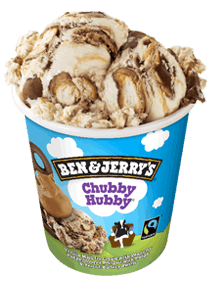 Chubby Hubby® Original Ice Cream Pint