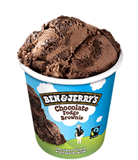 Chocolate Fudge Brownie™ Original Ice Cream Pint